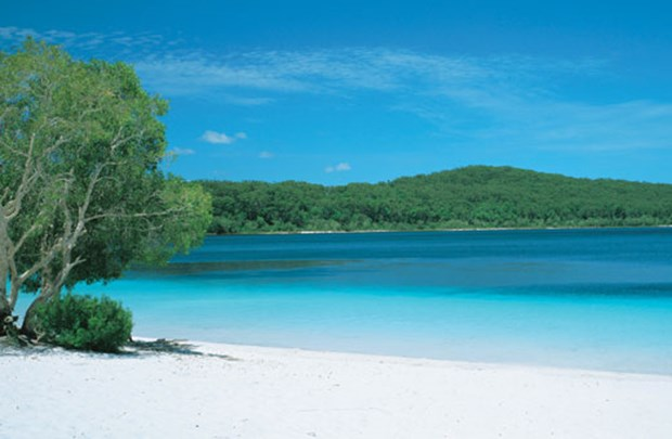 Lake McKenzie, Fraser Island. Image courtesy of Tourism Queensland.