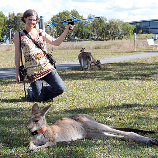 Beth Brunton with kangaroos and tracking equipment