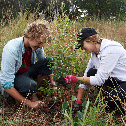 Dylan Sweeney and Christina Garner planting a tree