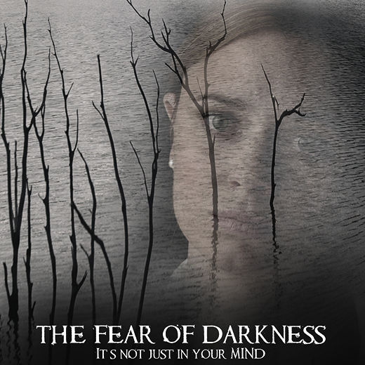 The promotional poster for the film, The Fear of Darkness