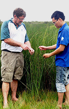 USC's Dr Bill Carter discusses with the Ranger-in-Charge of Phu My Wetlands the use of sedges for making woven souvenirs