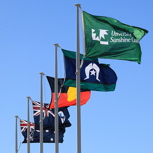 Indigenous flags.
