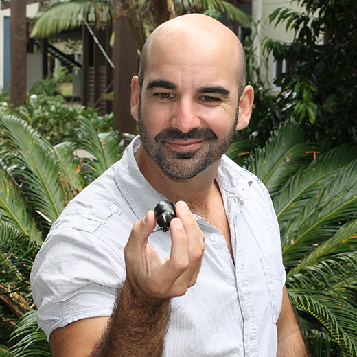 Lecturer in Animal Ecophysiology Dr Christofer Clemente with one of the insect species included in the study.