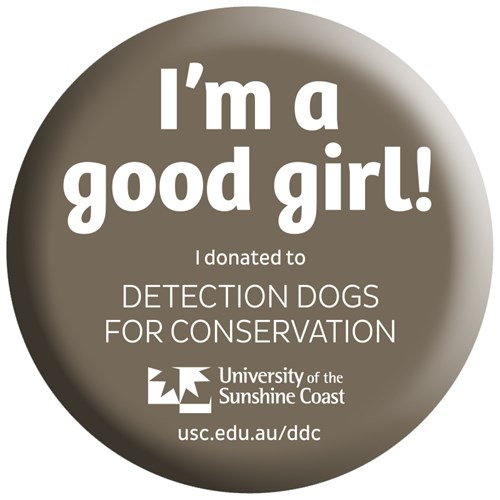 I'm a good girl! I donated to Detection Dogs for Conservation sticker