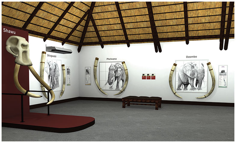 Visualisation, Letaba Elephant Hall, Kruger National Park. 3D work by Anthony Haynes, drawings by Megan Gibbes