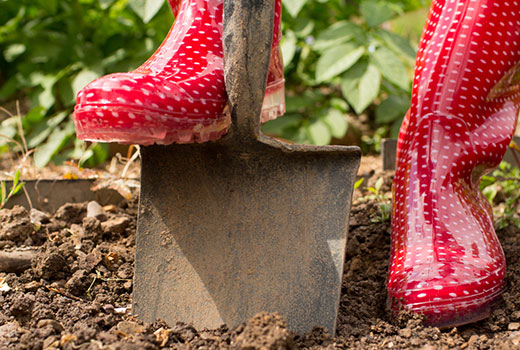 Gardening gumboots and shovel