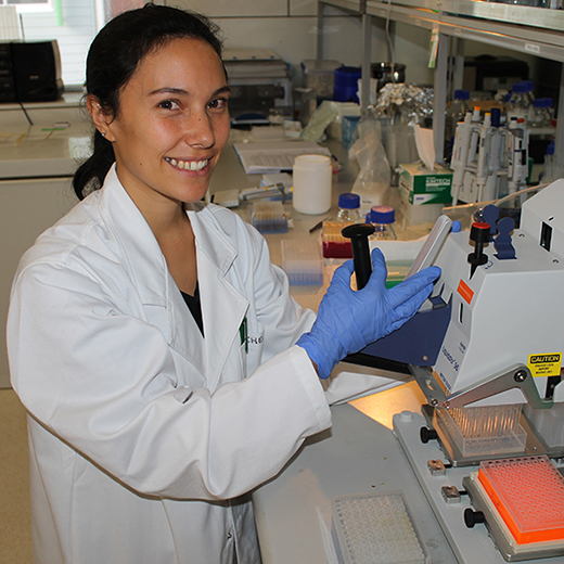 Rachele Wilson conducting genetic analysis in a USC laboratory.
