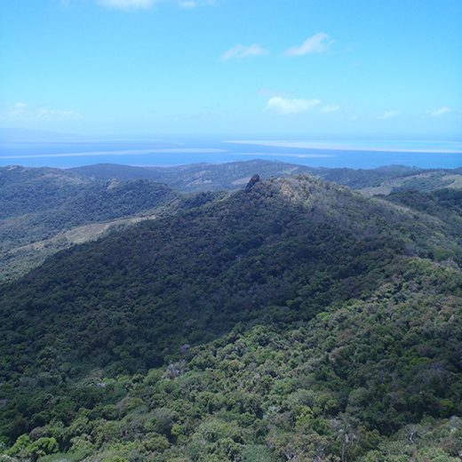 A photograph taken from the summit of Seseleka hillfort in Fiji.