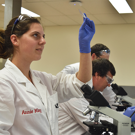 Students Andrea Crittenden-Rowe (front) and David Colbran in the science labs at USC Fraser Coast