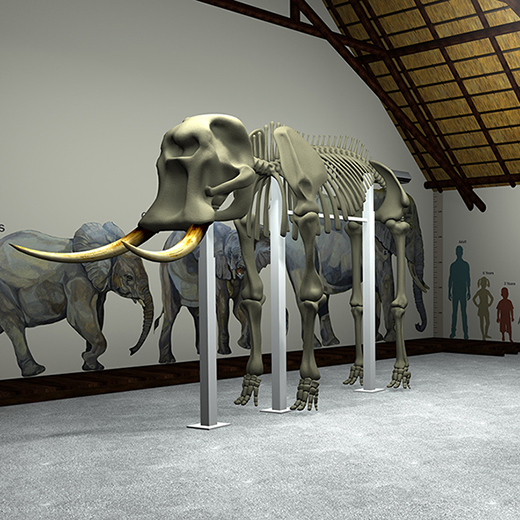 3D-rendered images, created by a Design student, simulating the final Elephant Hall installation.