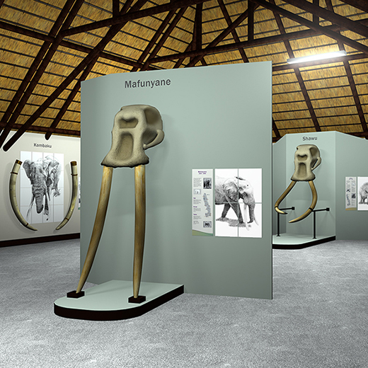 3D-rendered images, created by a USC Design student, simulating the final Elephant Hall installation.