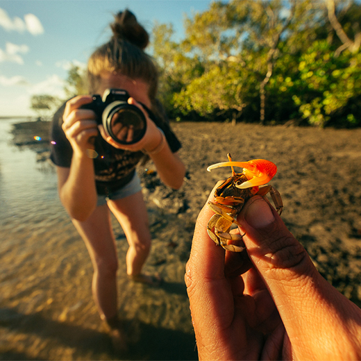 USC Animal Ecology students take part in photography field work on Fraser Island