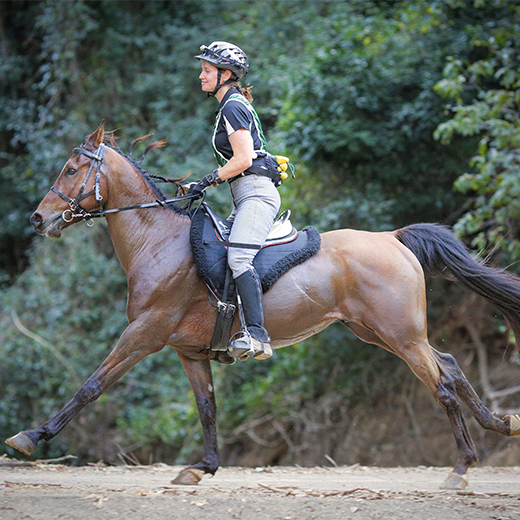 USC Gympie Nursing Science student Lisa Loranger and her horse Drizzle