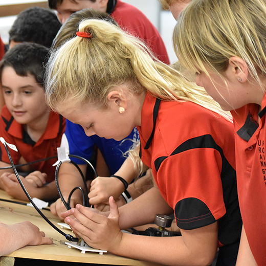 Primary school students join in interactive career activities at USC Explore Pathways