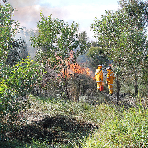 Rural Fire Service Queensland fire officers conduct a presribed burn at USC