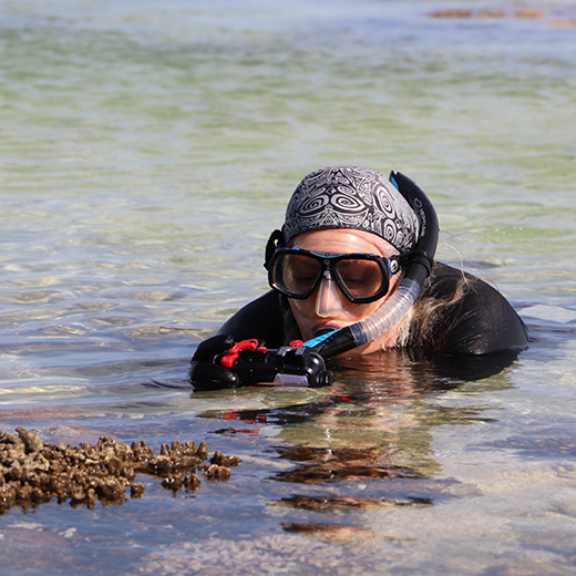 USC Senior Lecturer in Animal Ecology Dr Kathy Townsend conducts reef surveys on Lady Elliot Island.