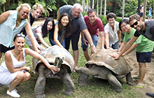 USC students and academics with two of Australia Zoo's famous tortoises