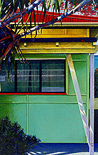 Susan Schmidt's painting Green House is part of the Fibro Coast exhibition